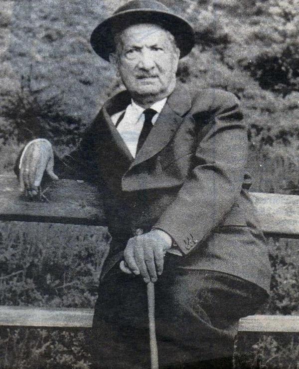 Heidegger anciano