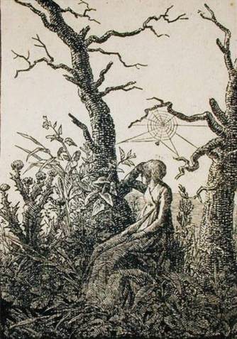 Mujer tela araña Friedrich