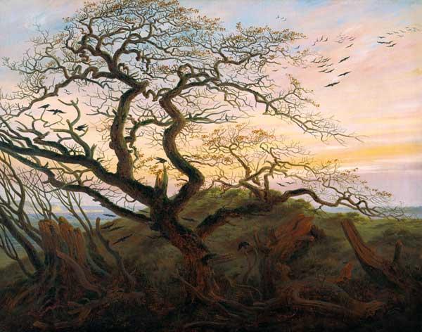 Friedrich cuervos