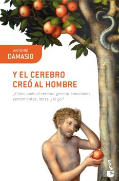 Damasio cerebro