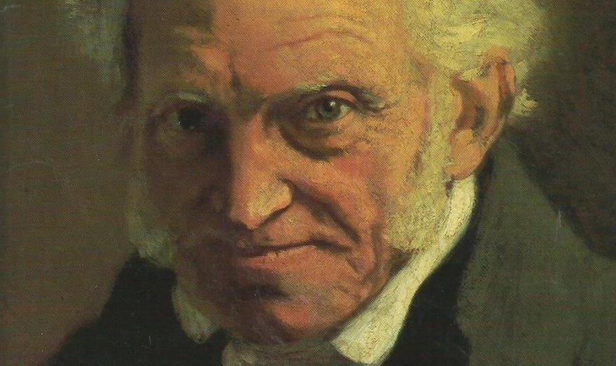 Breves Notas Sobre Parábolas Y Aforismos De Schopenhauer